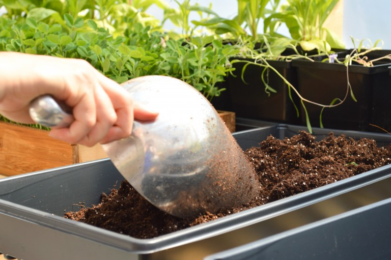 scooping soil into a plastic tray