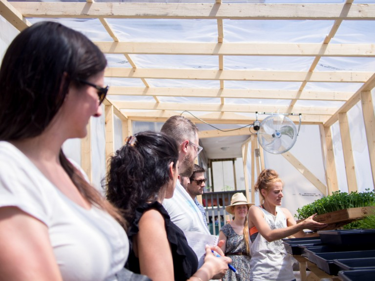 Workshop participants learning from Samantha in the greenhouse.